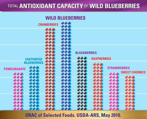 harat-net-wild-blueberries-orac-score-usda-ars-vahsi-yabanmersini-degeri